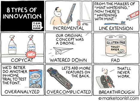 8 types of innovation | Lean EntrepreneurshiԀPassion | Scoop.it