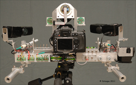 Fotoopa's unbelievable Nikon custom rig for capturing insects in flight | Photography Gear News | Scoop.it