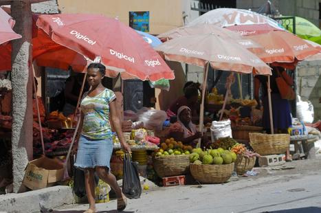 For investors, Haiti is no tropical paradise | Mexico and Haiti-Jacob Durkin | Scoop.it