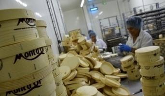 Haut-Doubs : plongeon dans l'intimité des fromageries, où se fabrique le mont d'or | The Voice of Cheese | Scoop.it