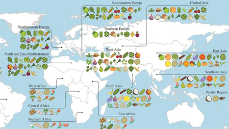 A Map Of Where Your Food Originated May Surprise You | INTRODUCTION TO THE SOCIAL SCIENCES DIGITAL TEXTBOOK(PSYCHOLOGY-ECONOMICS-SOCIOLOGY):MIKE BUSARELLO | Scoop.it