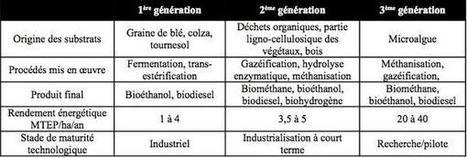 Les biocarburants de troisième génération - Techniques de l'Ingénieur | Biocarburants de 3ème génération | Scoop.it
