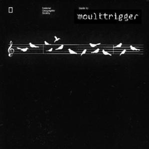 Moulttrigger ~ Birds | DESARTSONNANTS - CRÉATION SONORE ET ENVIRONNEMENT - ENVIRONMENTAL SOUND ART - PAYSAGES ET ECOLOGIE SONORE | Scoop.it