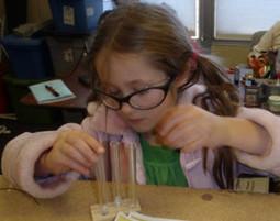 STEM In The K-8 Classroom | Just another WordPress site | Teach Alaska | Scoop.it