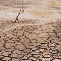 U.S. Rare Earth Minerals, Inc. - Drought Affecting Food Prices In 2013 | Restoration Agriculture | Scoop.it