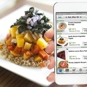 Vegan diet meal planning app service for iPhone - features 1000's of recipes, grocery lists and allergy filter for just $15, save 74% from MettaMeals | Vegan going mainstream | Scoop.it