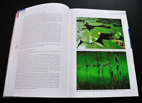 Les habitants du Grand Lyon invités à redécouvrir leur nature | Patrimoine Végétal et Biodiversité | Scoop.it