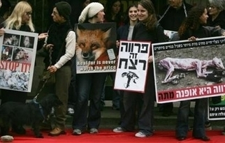 Israel Supports Animal Rights With Ban Against Cosmetics, Cleaning Materials Testing | Animals R Us | Scoop.it