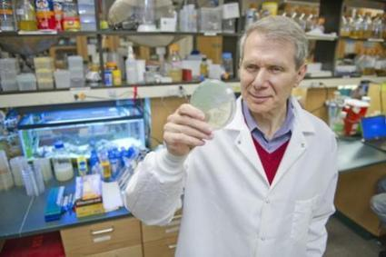 Researchers discover new treatment to cure MRSA infection   Sustain Our Earth   Scoop.it