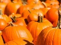 Tips for a Successful Seasonal Marketing Campaign | E-commerce Trends | Scoop.it