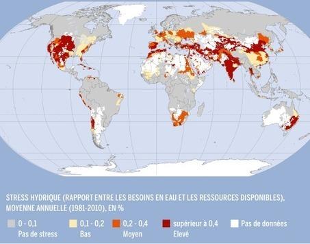 Au Maroc, les batailles pour préserver l'or bleu | International aid trends from a Belgian perspective | Scoop.it
