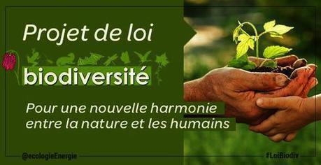 Jean-Pierre Bompard » Blog Archive » Loi biodiversité : aller encore plus loin ! | Biodiversité ordinaire et fonctionnelle en agriculture | Scoop.it