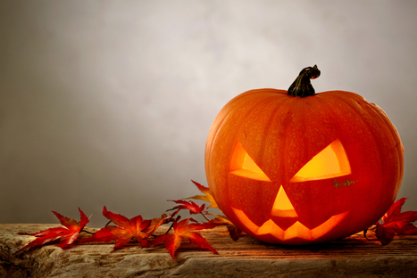 Years in the works, .realtor domains will launch by Halloween | Inman News | Real Estate Mortgage News | Scoop.it