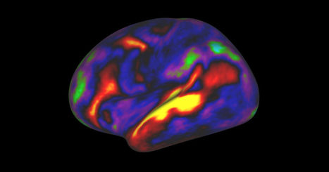 A New Map of the Brain Redraws the Boundaries of Neuroscience | Frontiers of  The Learning Sciences | Scoop.it