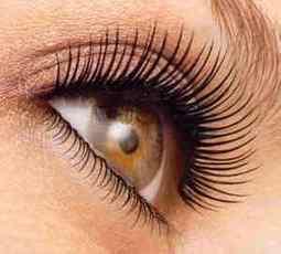 How to Grow Eyelashes Back | nestpillmart | Scoop.it