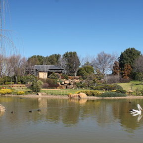 Dubbo Botanic Garden - ABC Local | Japanese Gardens | Scoop.it