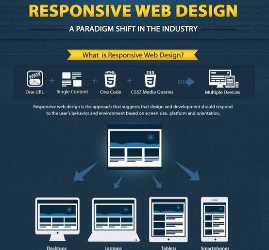 Why Responsive Website Design Is BEYOND Important [Infographic]