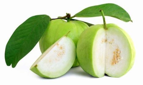 "Health Benefits of Guava | Organic Facts (""treats diarrhea, dysentery, cough, cold, high blood"") 