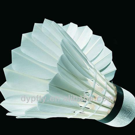 VOLANTE/GALLO | Badminton el deporte de raqueta mas rápido del mundo | Scoop.it