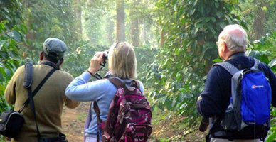 Coorg and Kabini Holiday Packages | Holidays in Abroad | Scoop.it