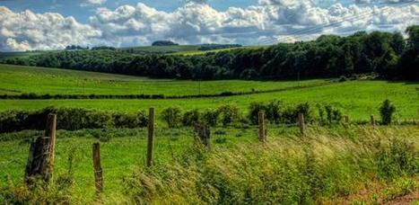 Boosting farm yields to restore habitats could create greenhouse gas 'sink' | Fragments of Science | Scoop.it