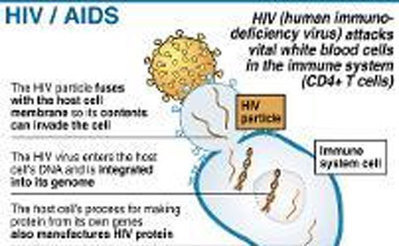 Standard Digital News - Study finds HIV pill cures cervical cancer | Possible Cancer Cures | Scoop.it