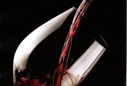 Venice wine tasting - private tour   Travel different   Scoop.it