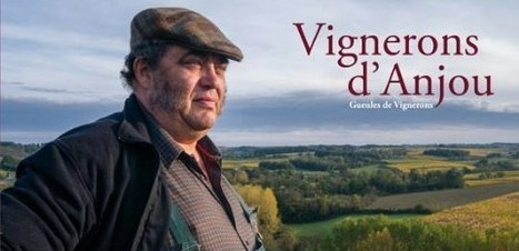 Jean-Yves Bardin | Vignerons d'Anjou. Gueules de vignerons | World Wine Web | Scoop.it