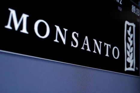 Takeover talk by rival 'wild speculation': Monsanto executive | Reuters | Grain du Coteau : News ( corn maize ethanol DDG soybean soymeal wheat livestock beef pigs canadian dollar) | Scoop.it