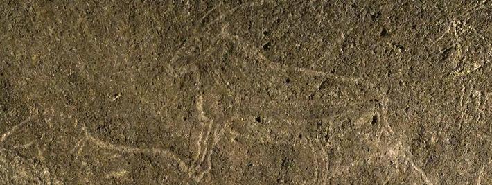 Espagne: des gravures rupestres de 14 000 ans découvertes sous un immeuble | France Info | Kiosque du monde : A la une | Scoop.it