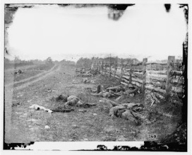 The Historical Society: The Battle of Antietam and War Photography | My Interests | Scoop.it