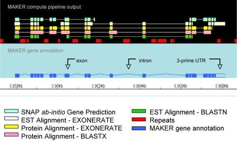 MAKER-P: A Tool Kit for the Rapid Creation, Management, and Quality Control of Plant Genome Annotations | Plant Genetics, NGS and Bioinformatics | Scoop.it