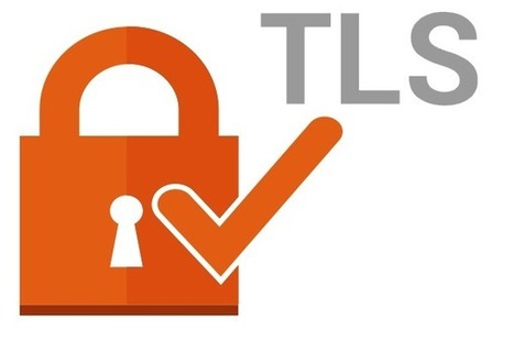 Telecom Object sur Twitter | TOIP & Security Survey By TelNowEdge | Scoop.it
