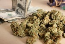 Why Colorado's Pot Industry May Be Cash-Only For The Foreseeable Future - ThinkProgress | News About Marijuana Business | Scoop.it
