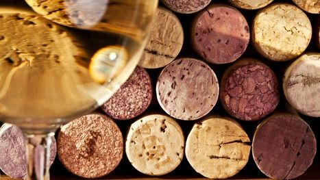 Ask a Somm: What Kind of #Wine Pairs With Indian Food? | Vitabella Wine Daily Gossip | Scoop.it