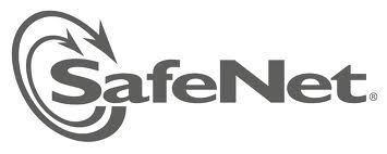 SafeNet lance un service Cloud de gestion des clés de chiffrement | Actualité du Cloud | Scoop.it