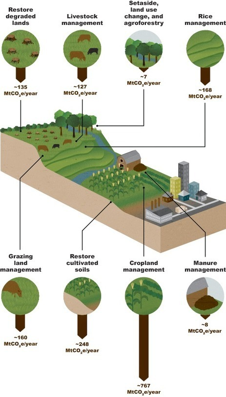 Agricultural mitigation potential | Big Facts | Climate Change + Food | Scoop.it