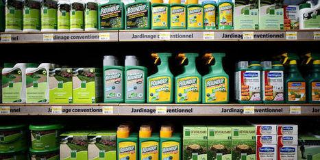 Le Parlement européen demande une réautorisation limitée du glyphosate - Le Monde | Alimentation21 | Scoop.it