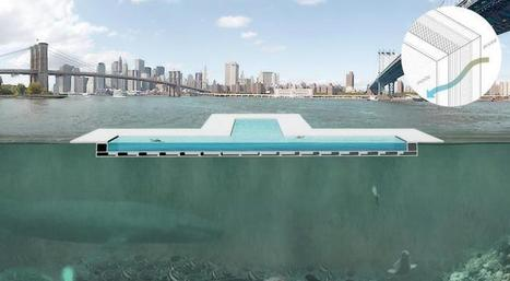 Plus Pool: 3 Days Left For NYC Floating Swimming Pool On Kickstarter - International Business Times | Swimming pool | Scoop.it