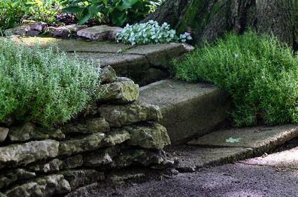 Backyard Landscaping Ideas For Your Edible Garden | Home Stuff | Scoop.it