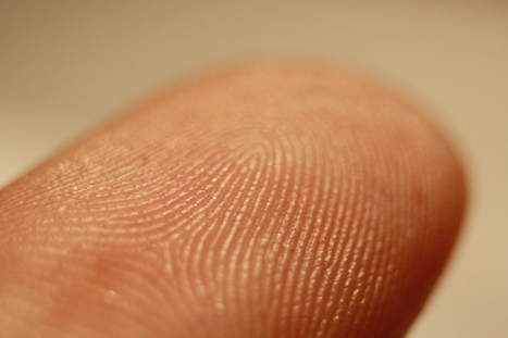 US Immigration Service set to introduce fingerprint checks | Gov & Law - Ian Whitney | Scoop.it