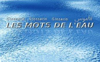 (IT) (FR) (AR) (EN) (ES) (DE) - Les mots de l'eau | CeRTeM | L'eau sous toutes ses formes | Scoop.it