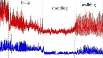 Überwachung: WLAN-Signale verraten, was Menschen tun | About leadership | Scoop.it