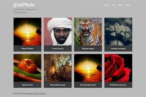 GridPhoto is a free WordPress Theme by Buzzrain   WP Daily Themes   Free & Premium WordPress Themes   Scoop.it