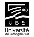Université de Bretagne-Sud - Voir ou revoir les interventions du séminiare sur l'évaluation des enseignements | mooc_réseaux sociaux_mobiles _ évaluation | Scoop.it