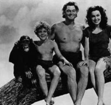 OBIT: Cheetah, chimp star of 'Tarzan' movies, dies at 80 - Delmarva Daily Times | Machinimania | Scoop.it
