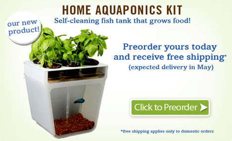 Back to the Roots | Mushroom Kit - Yields up to 1 1/2 lbs in 10 Days | Aquaponic - Heidelberg | Scoop.it