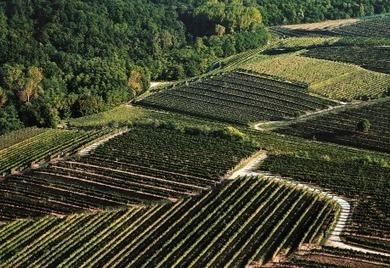 « Slow tourisme » : l'exemple italien de Cividale del Friuli | Voyager autrement | Scoop.it