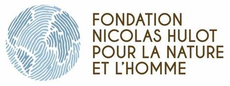 Recrutement | Fondation pour la Nature et l'Homme créée par Nicolas Hulot | Recrutement Emploi Environnement et ESS | Scoop.it