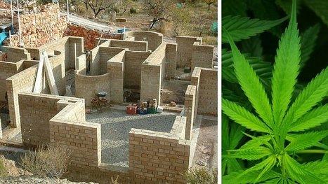 Des maisons en cannabis ? L'idée de génie qui révolutionne le secteur de la construction. | construction durable | Scoop.it